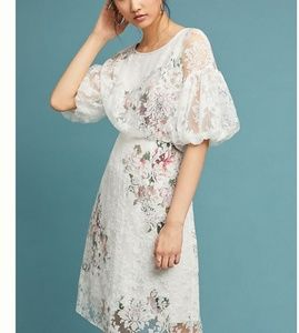 JUST IN 🔶️ (14) Anthropologie Guiana Floral Dress